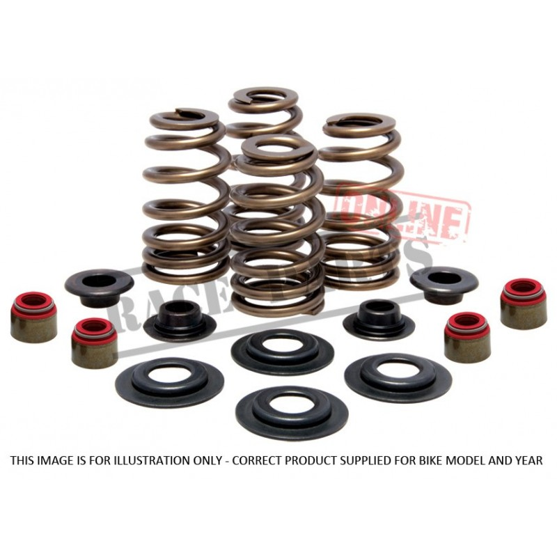 372-30-30880 Complete Valve Spring Kit-CRF150R '07-'20